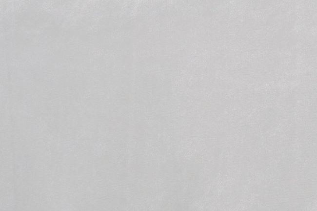 Koženka stříbrná 01268/070